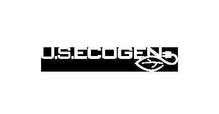 ecogeen_ny_450